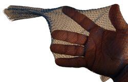Mesh Net Roll Example