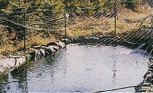 Predator Control Net