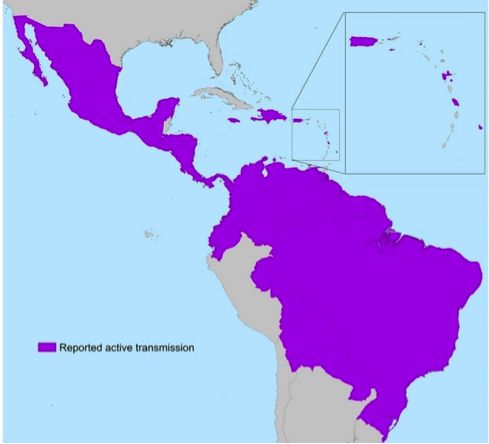 Map of the migration of zika virus