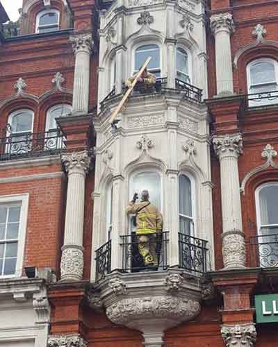Brave Fire fighters rescuing pigion