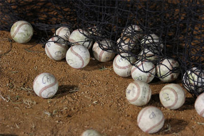 Baseballs in Safety Netting