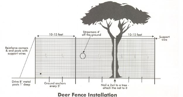 Deer Net Installation Diagram