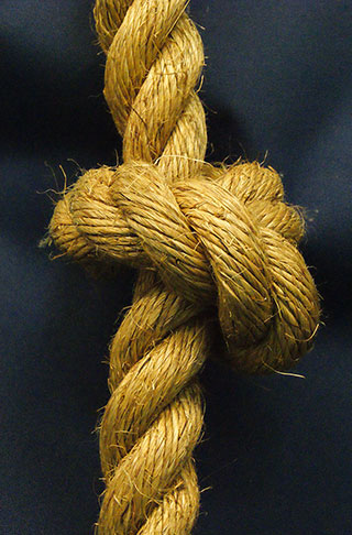 Close up of knot