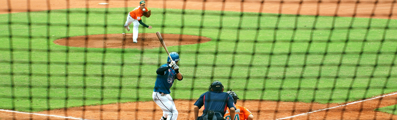 Custom Baseball Netting Panel