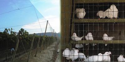 Plastic bird netting