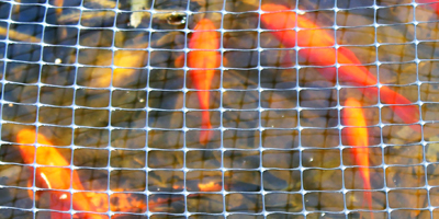 Plastic Pond Netting